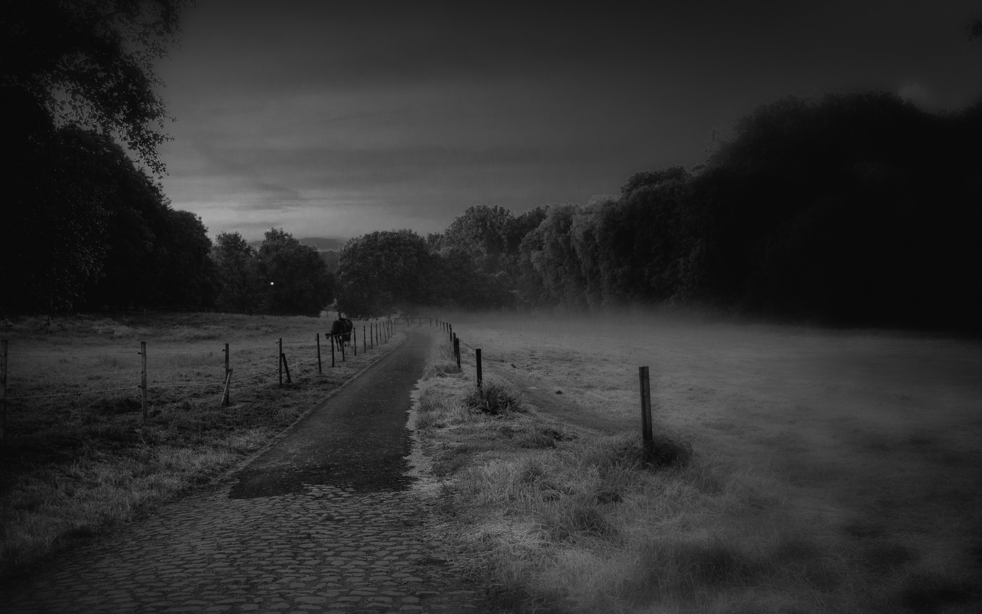 Night photography par Marc Feron