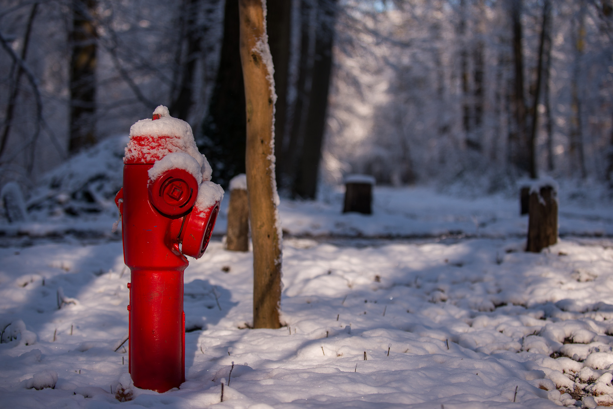 Bouche d'incendie sous la neige et lumière hivernale, ambiance et détail photographique par Marc Feron