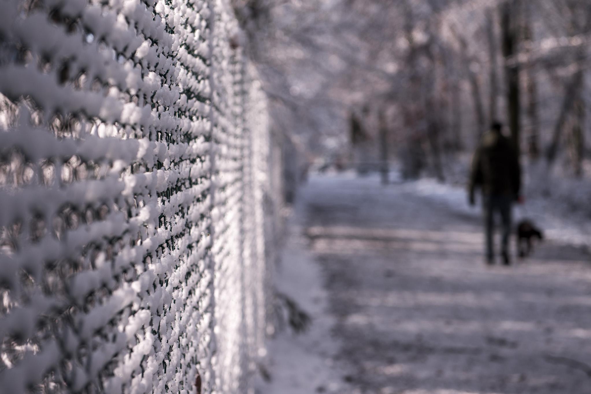 Neige, promeneur et lumière hivernale, ambiance et détail photographique par Marc Feron
