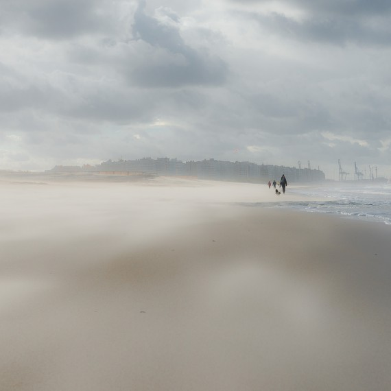 Vent de sable - mer du nord, paysage par Marc Feron